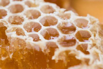 La miel de abeja y sus propiedades  Esencia de Pueblo