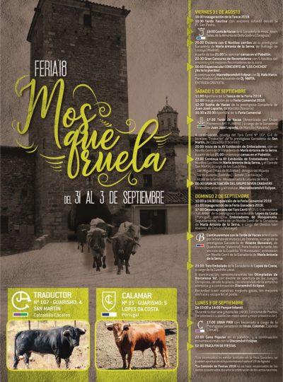 Feria Ganadera y Comercial. Mosqueruela @ Mosqueruela   Aragón   España