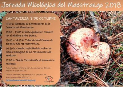 Jornada Micológica del Maestrazgo @ Cantavieja | Aragón | España
