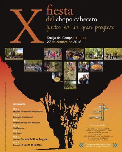 X Fiesta del Chopo Cabecero @ Torrijo del Campo | Aragón | España