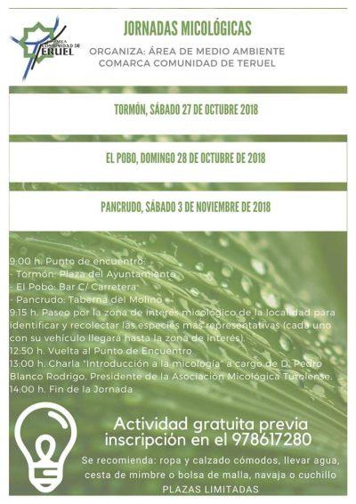 Jornadas Micológicas Comarca Comunidad de Teruel @ Aragón | España