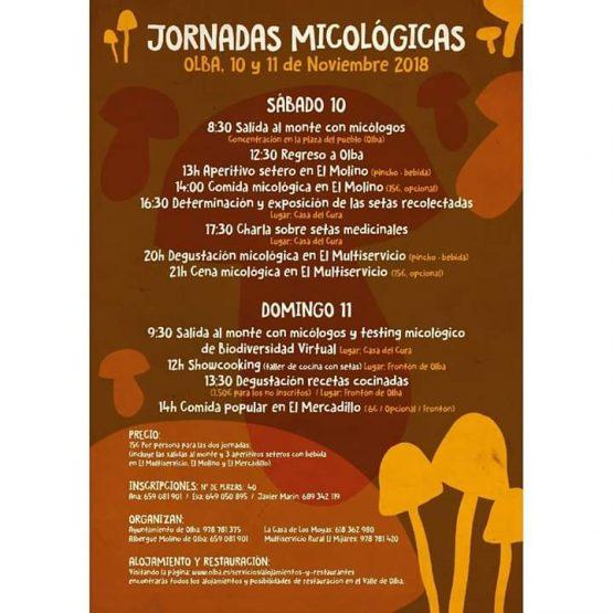 jornadas micologicas olba 2018