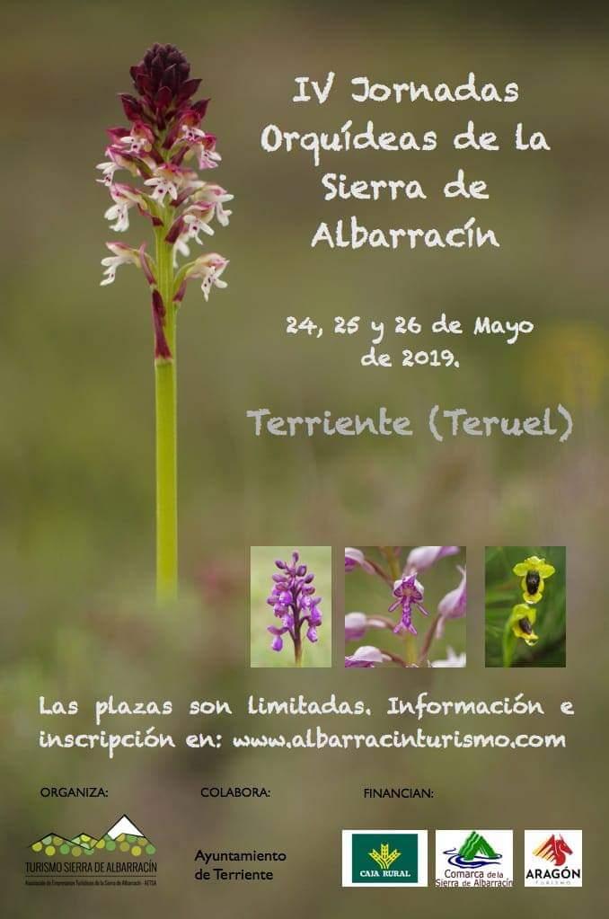 jornadas orquideas albarracin 2019