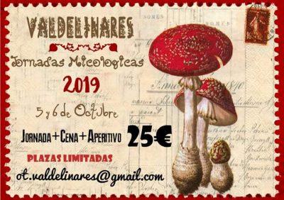 Jornadas Micológicas de Valdelinares @ Valdelinares   Aragón   España