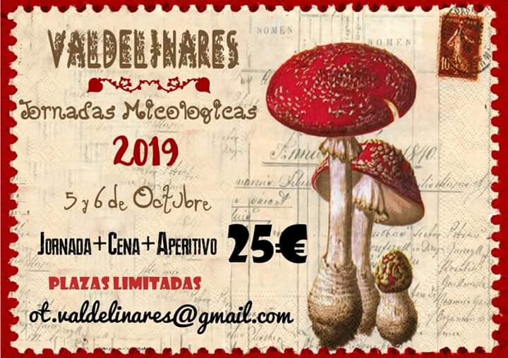 jornadas micologicas valdelinares 2019
