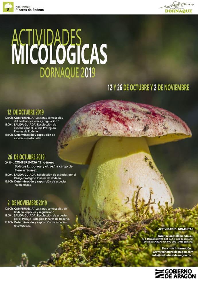 actividades micologicas dornaque 2019