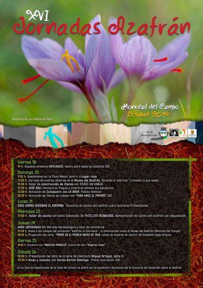 XVI Jornadas del Azafrán. Monreal del Campo @ Monreal del Campo | Aragón | España