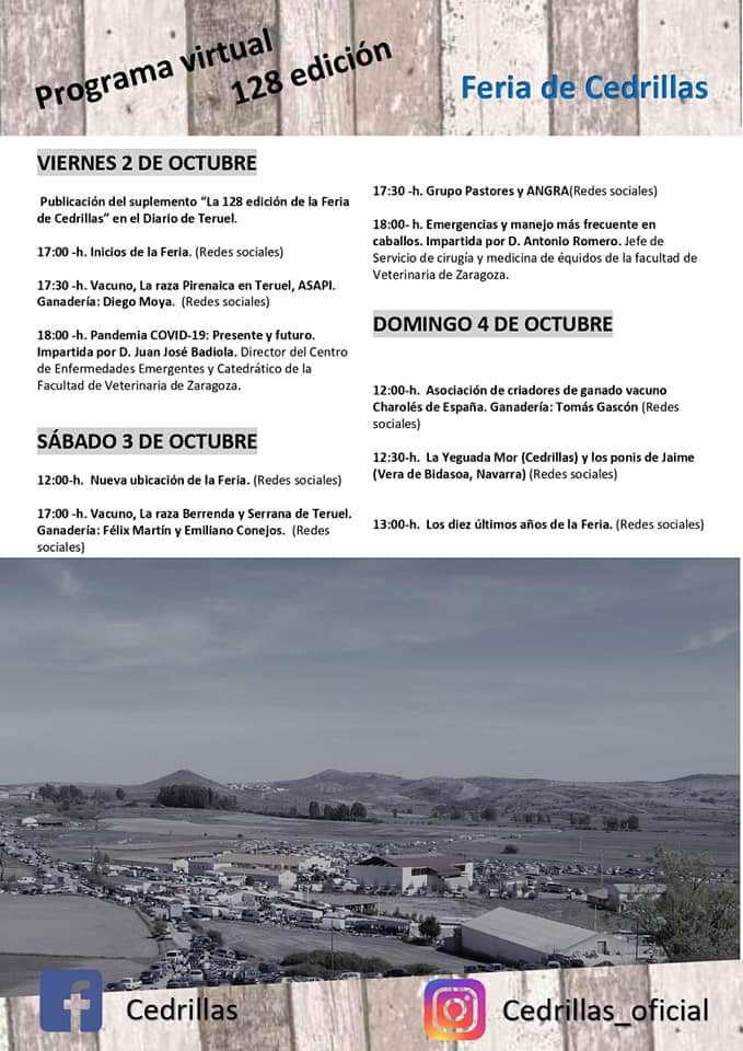 feria cedrillas virtual programa 2020