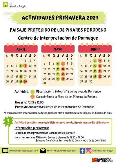 Actividades Primavera 2021 Pinares de Rodeno @ Centro de Interpretación de Dornaque | Albarracín | Aragón | España